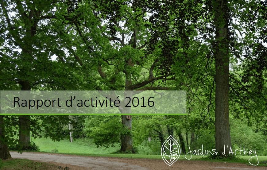 Notre rapport d'activité 2016 est disponible!