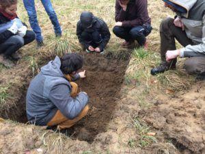 Formation : l'agroécologie, le compost et la vie du sol